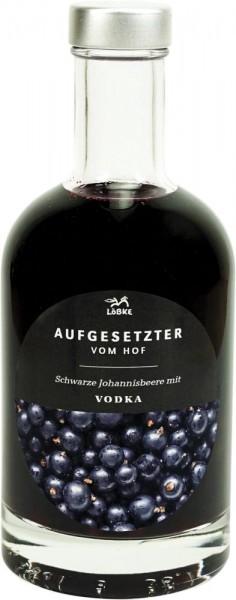 Aufgesetzter Schwarze Johannisbeere 0,35l Nocturne-Flasche